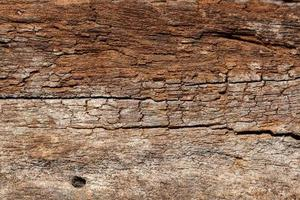 texture de modèle de bois ancien photo