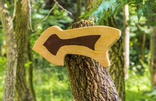 pointeur de flèche inhabituel en bois, navigation dans le parc photo