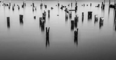 poteaux dans l'eau photo