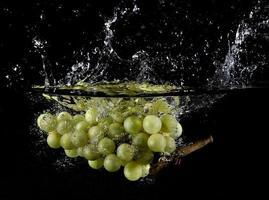 fruits frais dans l'eau