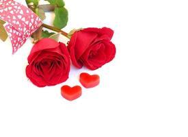 rose rouge avec coeur rouge, concept d'amour photo
