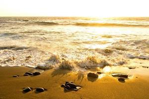 Surf en mer au coucher du soleil dans la zone la pared sur fuerteventura