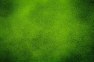fond de texture verte photo