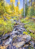 ruisseau alpin au nouveau mexique photo