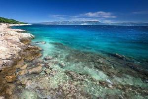 plage incroyable avec de l'eau de mer cristalline avec des pins