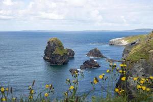 belle vue sur les rochers côtiers