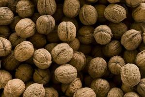 texture de noix circassienne