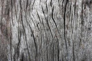 Texture du bois. fond abstrait