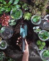 jardinier tenant une pelle, truelle photo