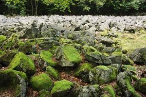 grosses pierres dans la mer de pierre andésite