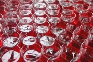 boisson rouge en verre.