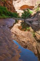 piscine d'eau - sentier de randonnée chasseur canyon moab utah
