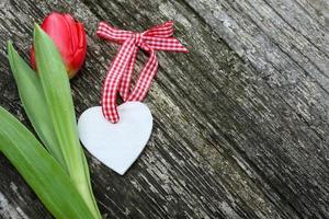 coeur blanc le jour de la saint valentin avec des tulipes de couleur