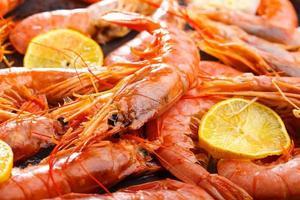 crevettes fruits de mer photo