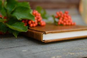 livre, nature, automne, éducation