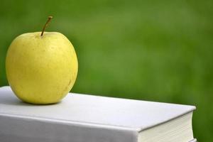 pomme et livre sur bois photo