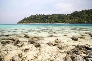 île de rok, koh rok, province de trang thaïlande