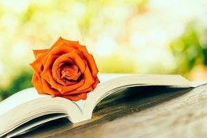 rose sur livre