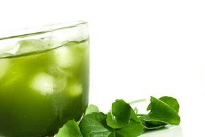 gotu kola vert frais photo