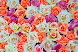 fond de roses colorées