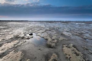 côte de la mer du Nord au coucher du soleil photo