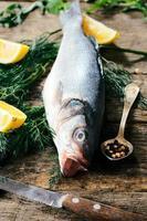 poisson de basse photo