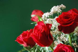 bouquet de roses rouges # 1