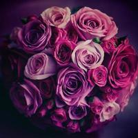 fleurs de mariage. roses roses et rouges. couleurs vintage.