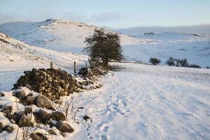 beau paysage rural d'hiver de lever de soleil couvert de neige