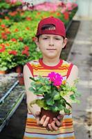 fleur pour toi photo