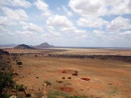parc national de tsavo est photo