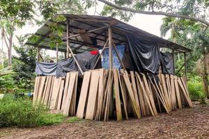 Lodge, parc national de Cuyabeno photo