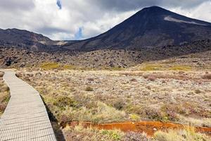 Sentier dans le parc national de tongariro