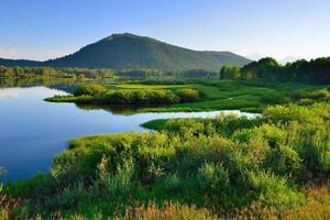 parc national de grand teton en été photo