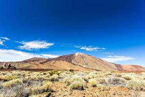 Parc national du Teide, Tenerife, Canaries, Espagne photo