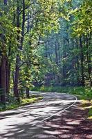 Une route de campagne pittoresque traverse le parc national de Shenandoah.