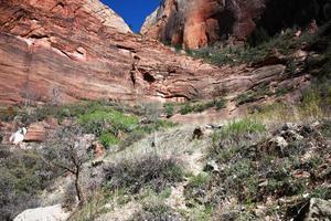 Le paysage du sentier de la grotte dans le magnifique parc national de Zion, Utah