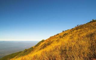 prairie dorée au sentier nature kew mae pan,