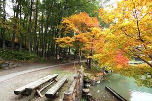 Les arbres aux couleurs de l'automne dans le village folklorique de Hida Takayama Japon