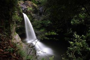 sentier des chutes de Waimoku photo