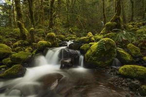 ruisseau sec photo