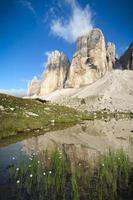 dolomites, lac alpin et cotonnier