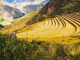 terrasses incas à pisac photo
