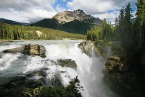 chutes d'Athabasca