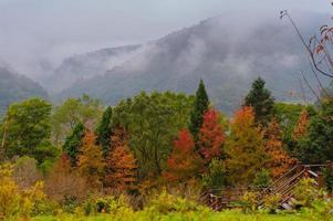 couleur d'automne photo