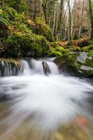 ruisseau en toscane