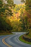 route courbe en S d'automne