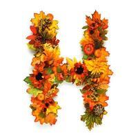alphabet automne