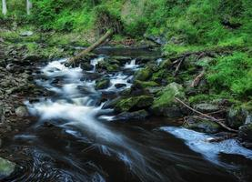 Blanice River en Bohême