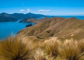 French Pass à Marlborough Sounds, île du Sud, Nouvelle-Zélande photo